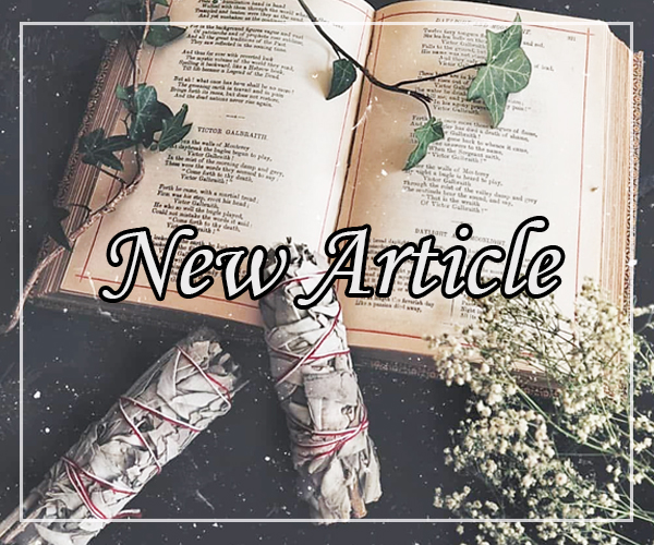 New Article